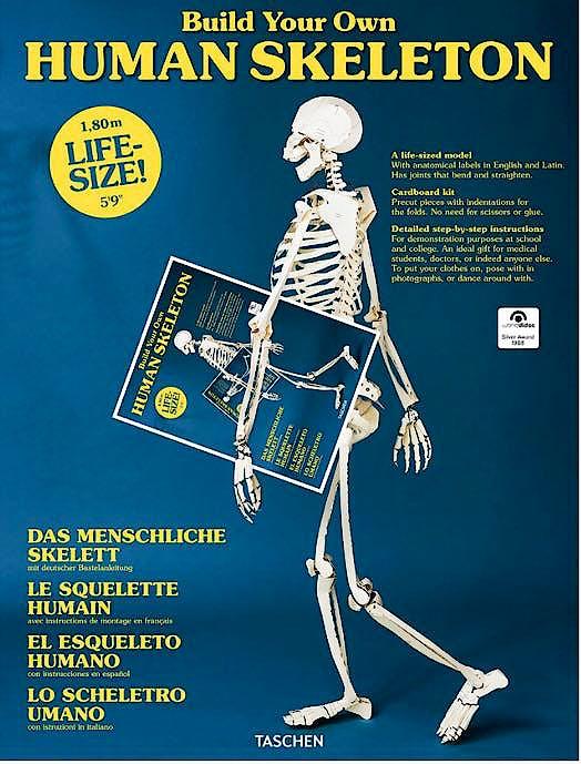 Portada del libro 9783836572545 Human Skeleton (AL/ES/FR/IN/IT)