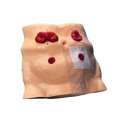 Modelo de Cuidados Estomatológicos