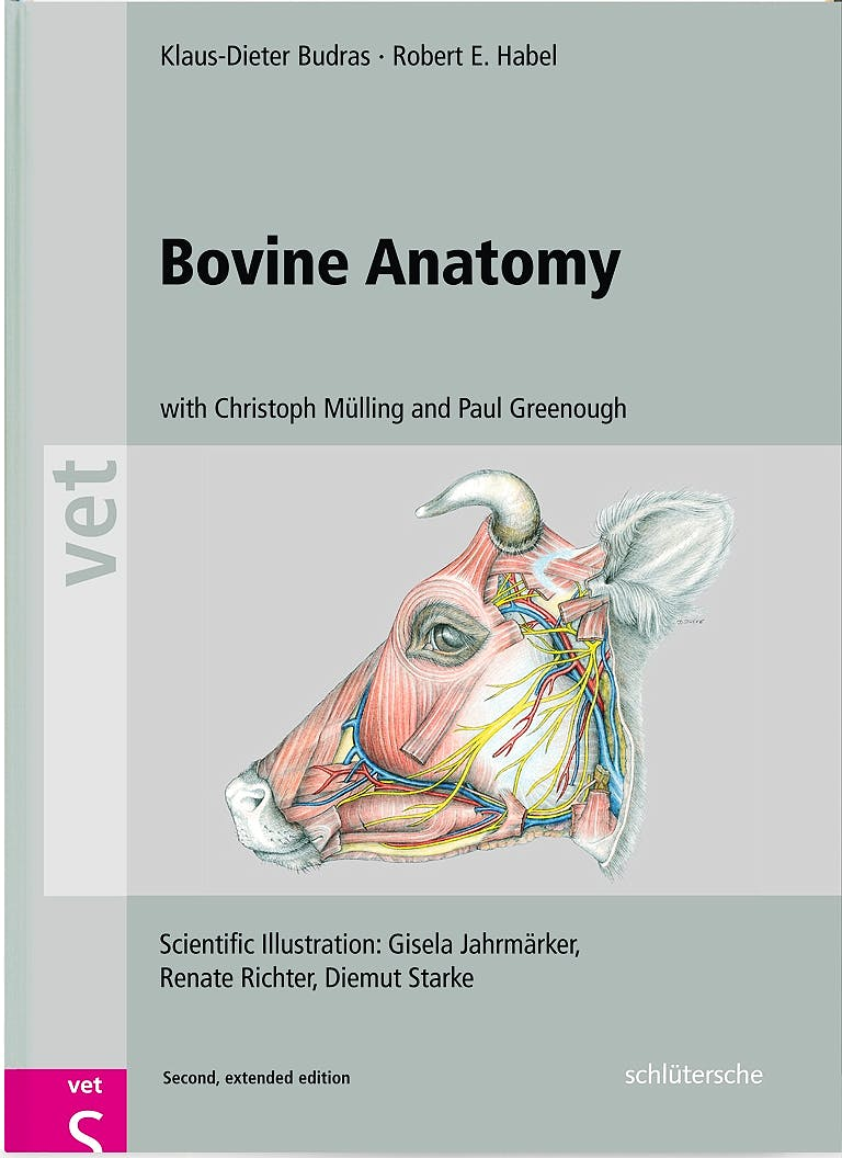 Portada del libro 9783899930528 Bovine Anatomy