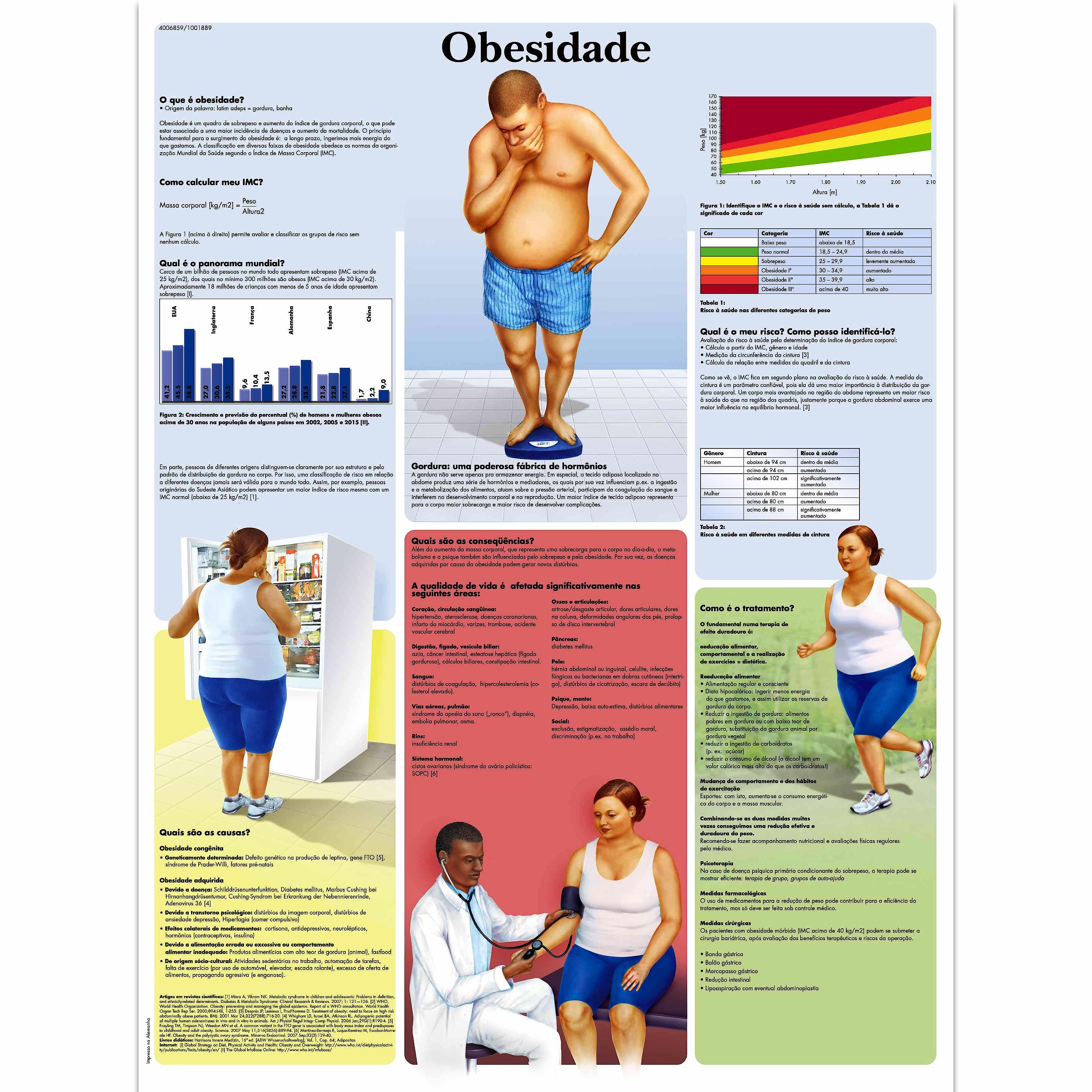 Lamina Obesidad - Adiposidad (formato 50 x 67 cm)