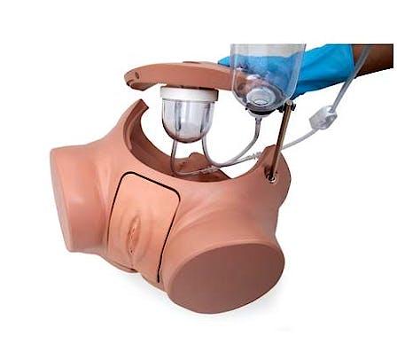 Simulador de cateterismo PRO SPC masculino