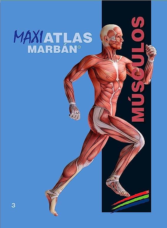 Portada del libro 9788417184070 Maxi Atlas, Vol. 3: Músculos