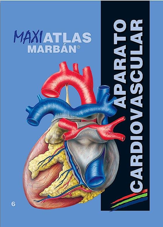 Portada del libro 9788417184100 Maxi Atlas, Vol. 6: Aparato Cardiovascular