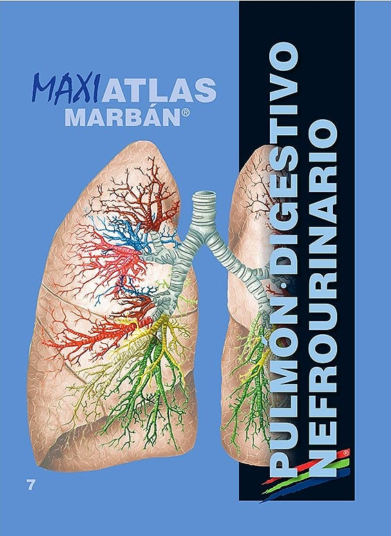 Portada del libro 9788417184117 Maxi Atlas, Vol. 7: Pulmón. Digestivo. Nefrourinario