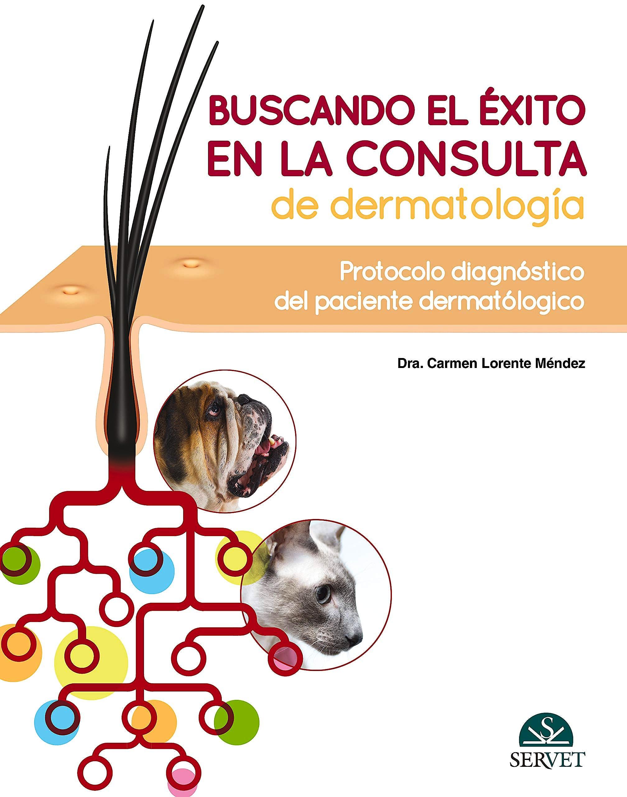 Portada del libro 9788417640446 Buscando el Éxito en la Consulta de Dermatología. Protocolo Diagnóstico del Paciente Dermatológico