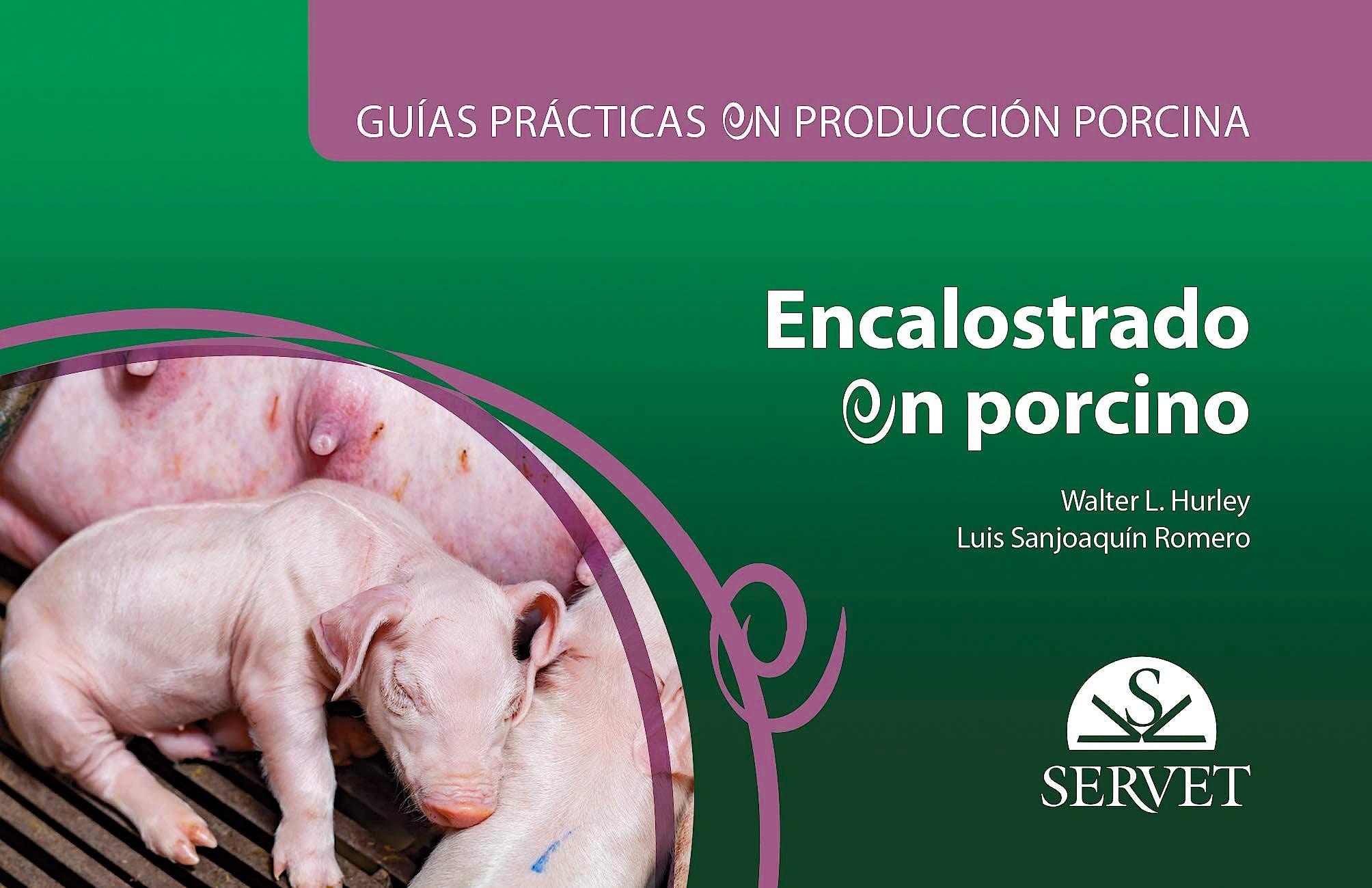 Portada del libro 9788417640590 Encalostrado en Porcino (Guías Prácticas en Producción Porcina)
