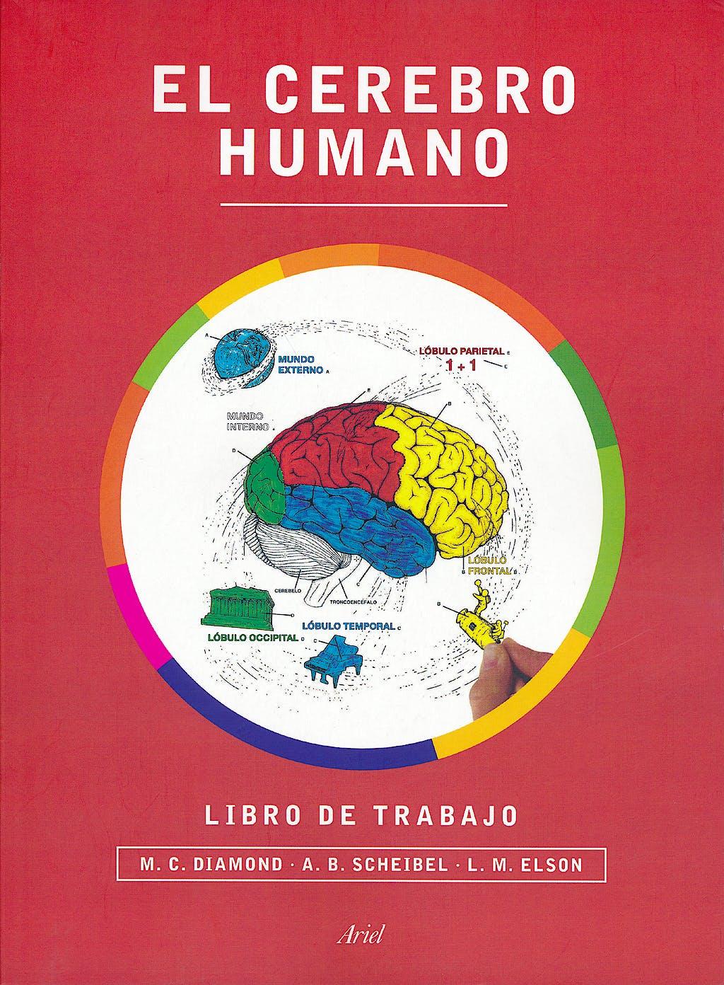 Portada del libro 9788434417212 El Cerebro Humano. Libro de Trabajo