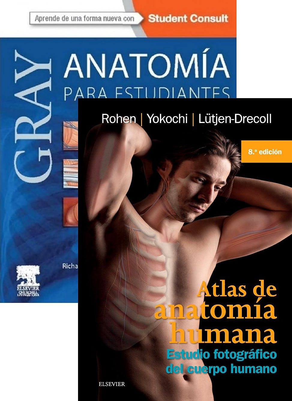 Portada del libro 9788445826911 Lote Gray Anatomía para Estudiantes + Atlas de Anatomía Humana. Estudio Fotográfico del Cuerpo Humano