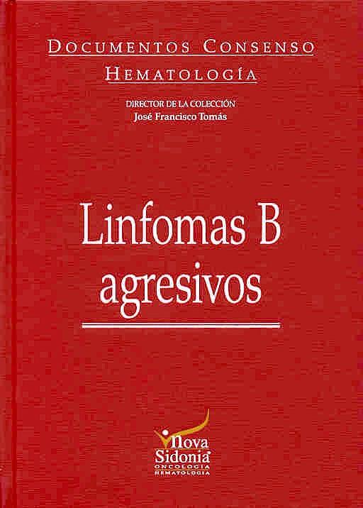 Portada del libro 9788478853519 Linfomas B Agresivos