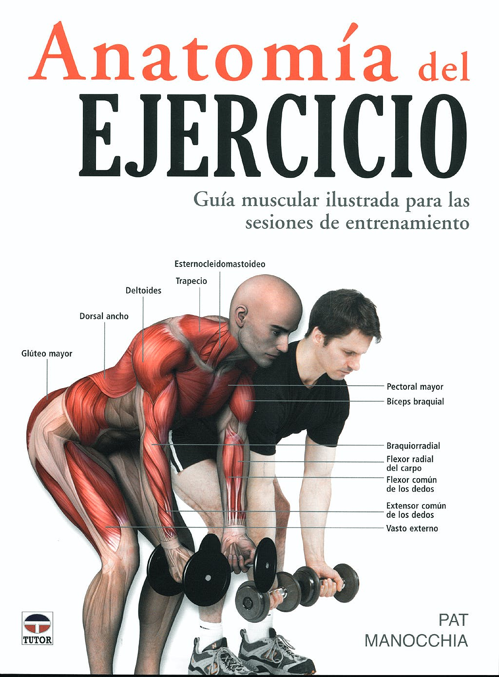 Portada del libro 9788479027261 Anatomia del Ejercicio. Guia Muscular Ilustrada para las Sesiones de Entrenamiento