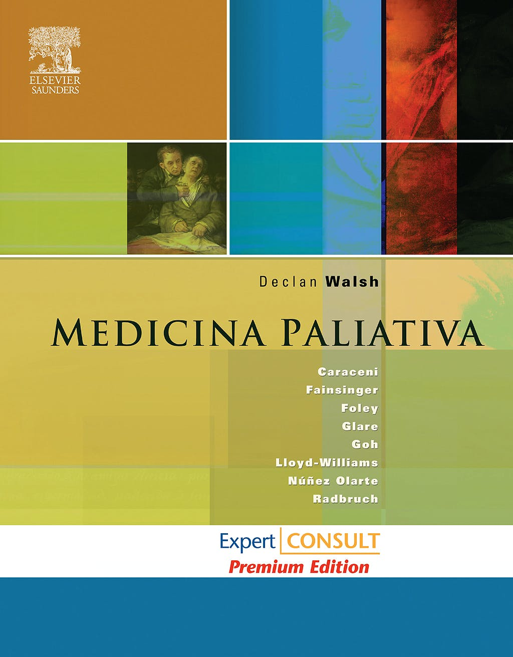 Portada del libro 9788480860260 Medicina Paliativa (Edición Premium) + Acceso Online