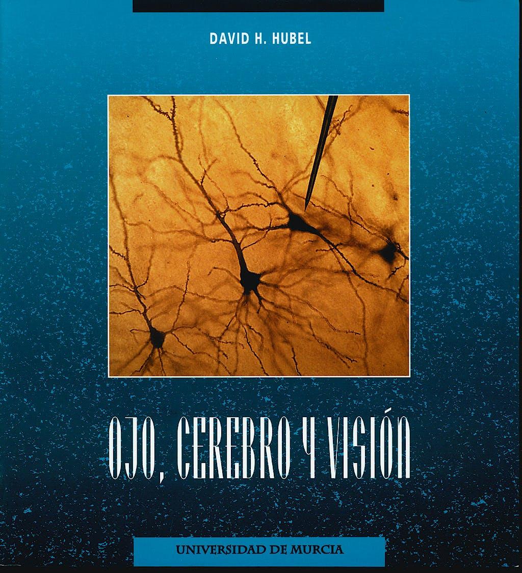 Portada del libro 9788483711439 Ojo, Cerebro y Vision