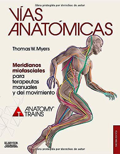 Portada del libro 9788490228111 Vías Anatómicas. Meridianos Miofasciales para Terapeutas Manuales y del Movimiento