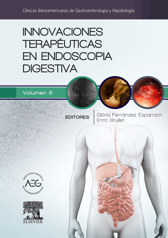 Portada del libro 9788490229538 Innovaciones Terapéuticas en Endoscopia Digestiva (Clínicas Iberoamericanas de Gastroenterología y Hepatología, Vol. 6)