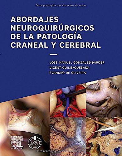 Portada del libro 9788490229552 Abordajes Neuroquirúrgicos de la Patología Craneal y Cerebral