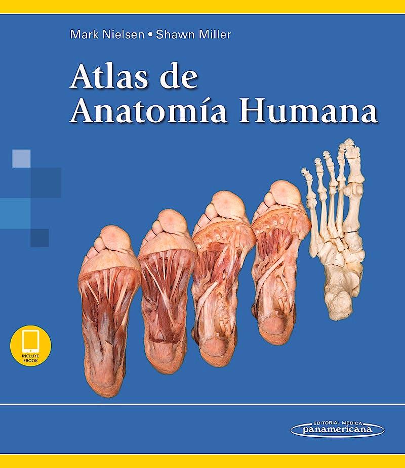 Portada del libro 9788491105084 Atlas de Anatomía Humana