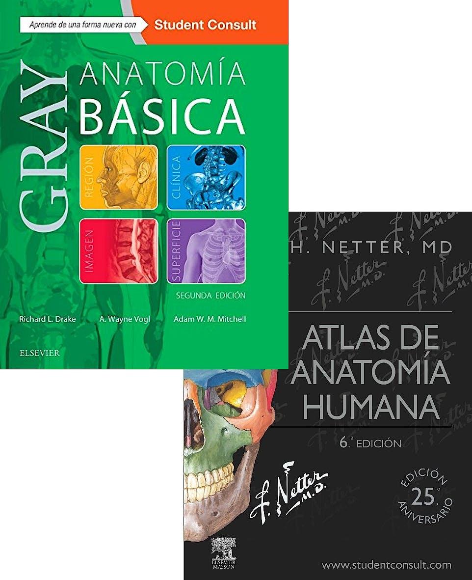 Producto: Lote Gray Anatomía Básica + Netter Atlas de Anatomía Humana
