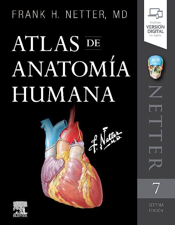 Portada del libro 9788491134688 Atlas de Anatomía Humana Netter