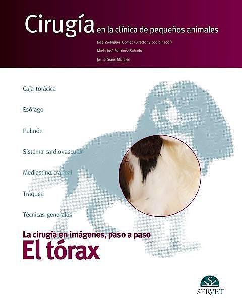Portada del libro 9788492569670 Cirugia en la Clinica de Pequeños Animales. la Cirugia en Imagenes, Paso a Paso: El Torax