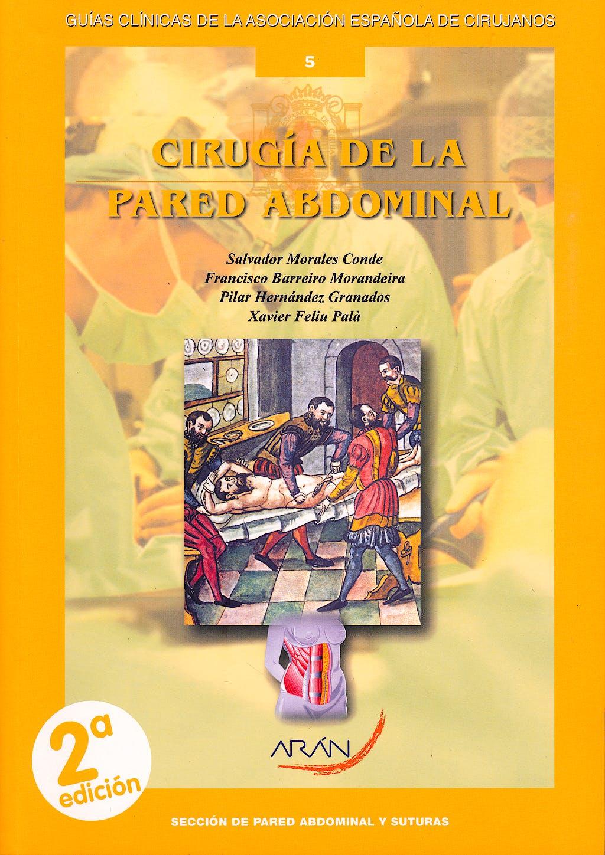 Portada del libro 9788492977444 Cirugia de la Pared Abdominal (Guias Clinicas de la Asociacion Española de Cirujanos Nº 5)
