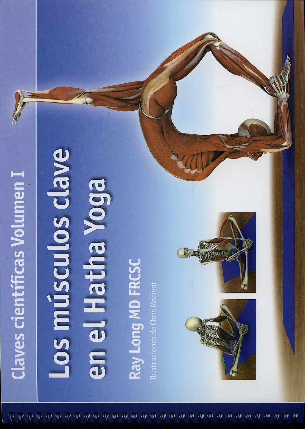 Portada del libro 9788495376800 Los Musculos Clave en el Hatha Yoga