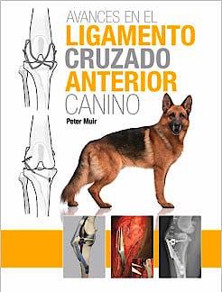 Portada del libro 9788496344389 Avances en el Ligamento Cruzado Anterior Canino
