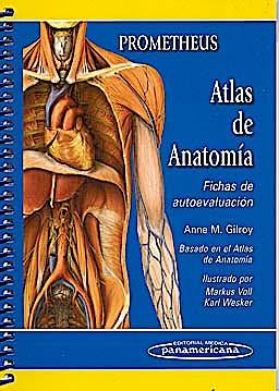 Portada del libro 9788498353686 Fichas de Autoevaluación (Basado en el PROMETHEUS Atlas de Anatomía)