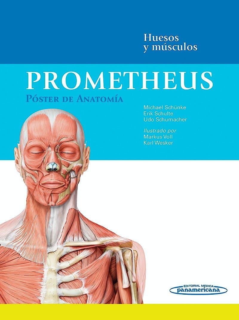 Portada del libro 9788498359619 Prometheus Póster de Anatomía. Huesos y Músculos (59 x 159 cm.)
