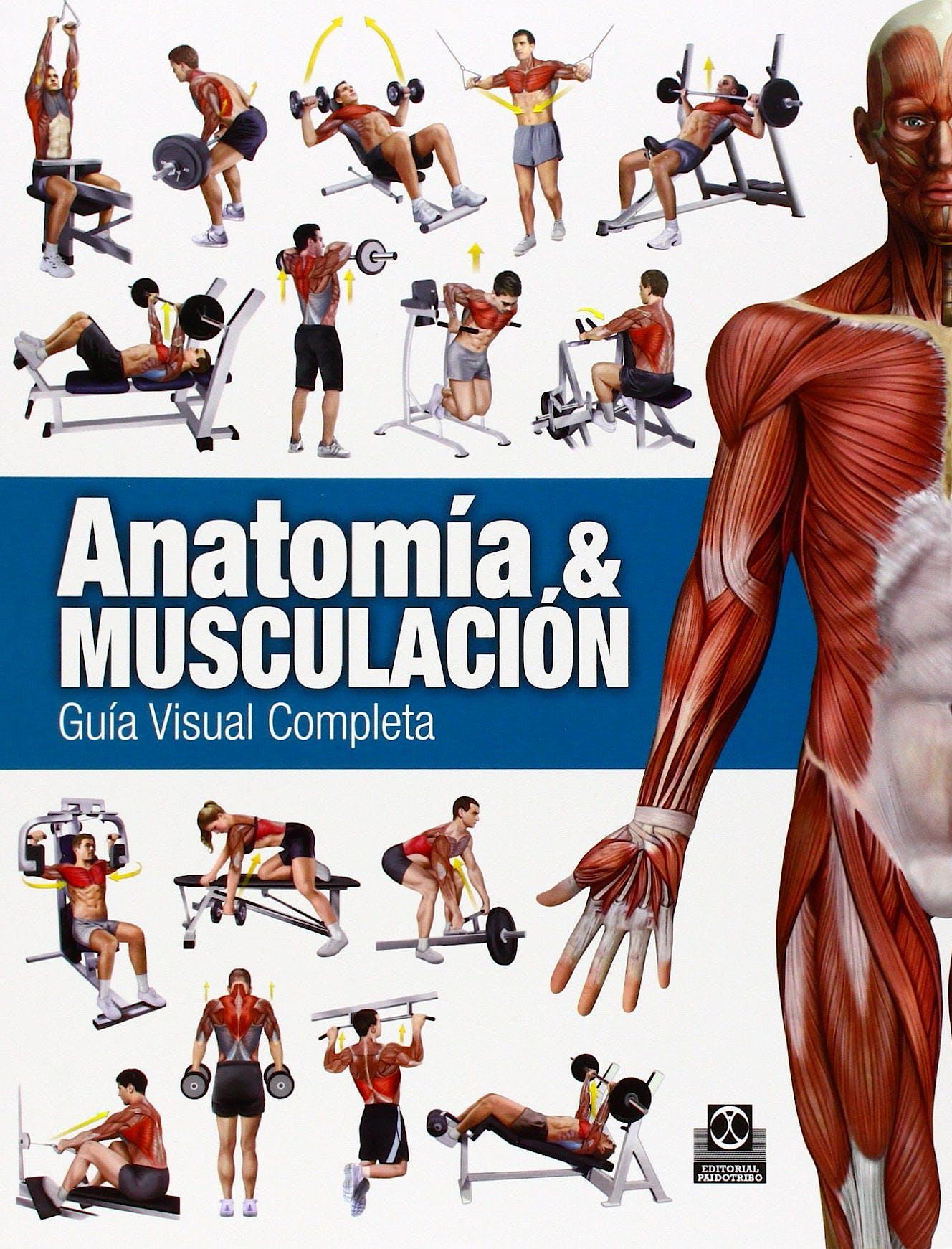 Portada del libro 9788499104911 Anatomía y Musculación. Guía Visual Completa