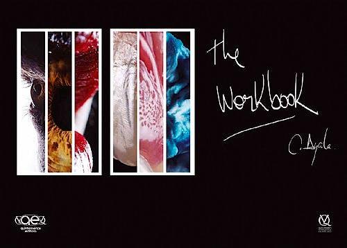 Portada del libro 9788578890933 The Workbook