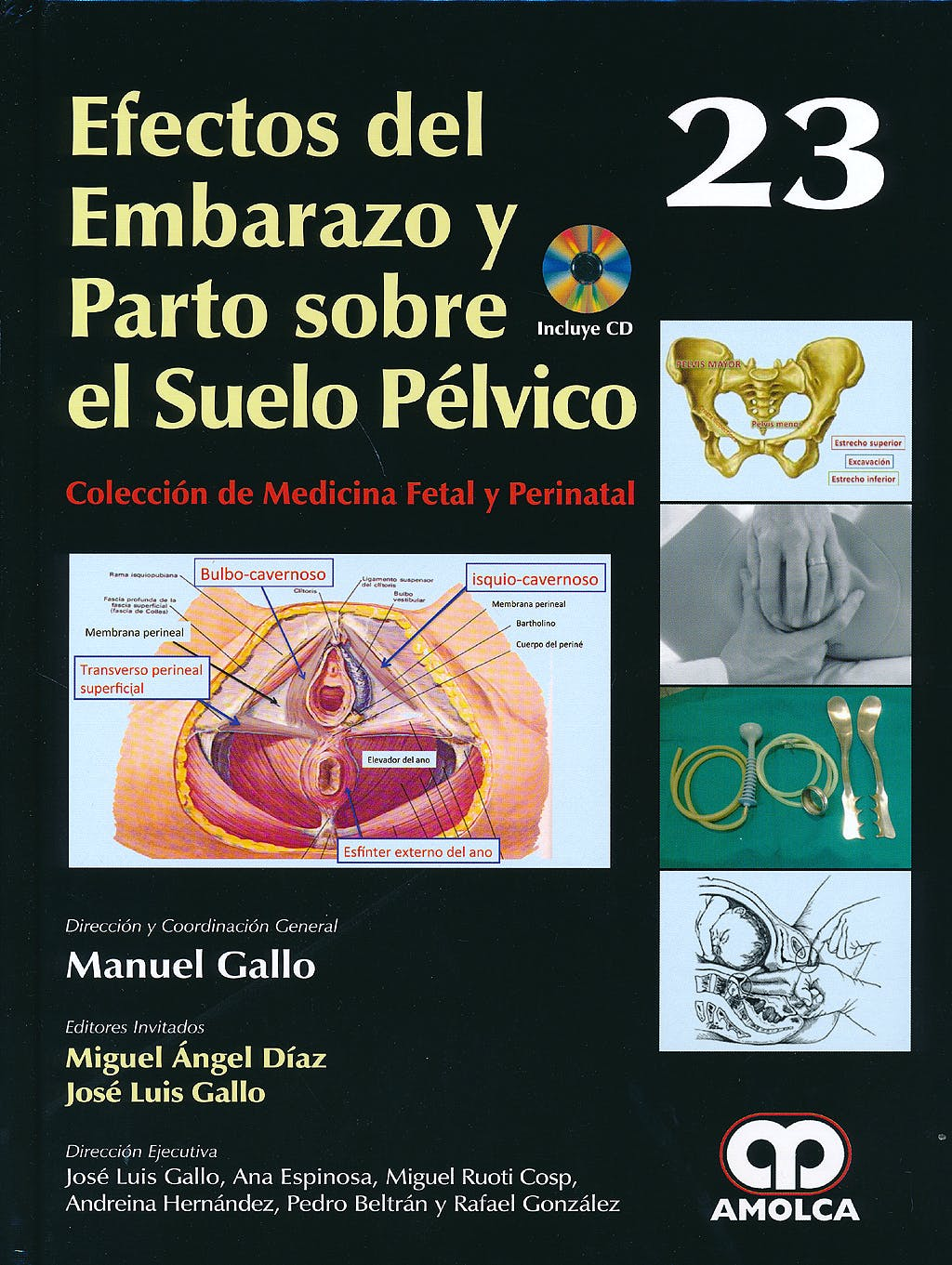 Portada del libro 9789588871233 Efectos del Embarazo y Parto sobre el Suelo Pélvico + DVD (Colección de Medicina Fetal y Perinatal, Vol. 23)