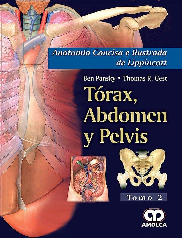 Producto: Torax, Abdomen y Pelvis (Anatomía Concisa e Ilustrada de ...